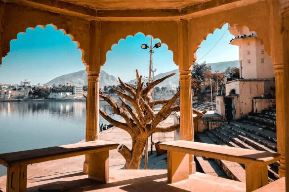 A Quick Insight to the City of Pushkar: The Rose Garden of Rajasthan