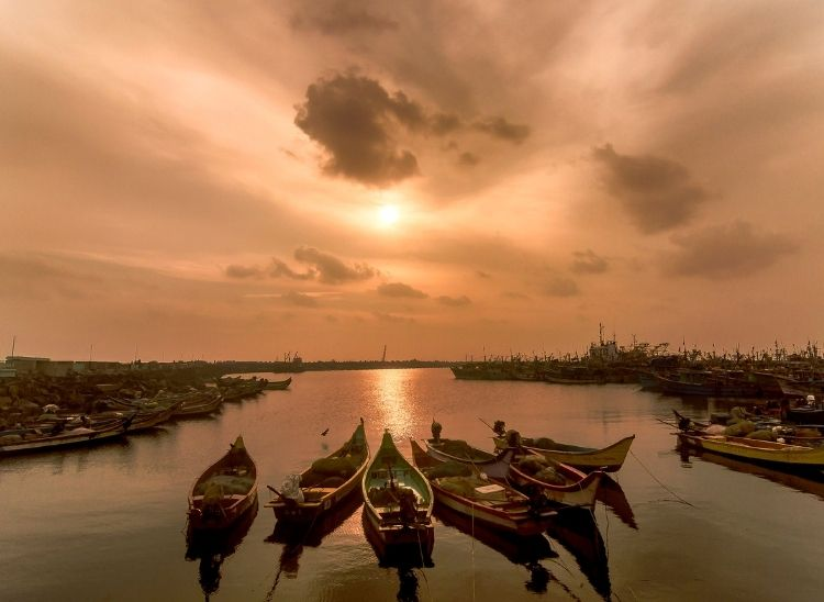 Royapuram fishing harbour, also known as Chennai fishing harbour, is one of the major fishing grounds for catching fishes and to witness the Yellow sky during sunrise