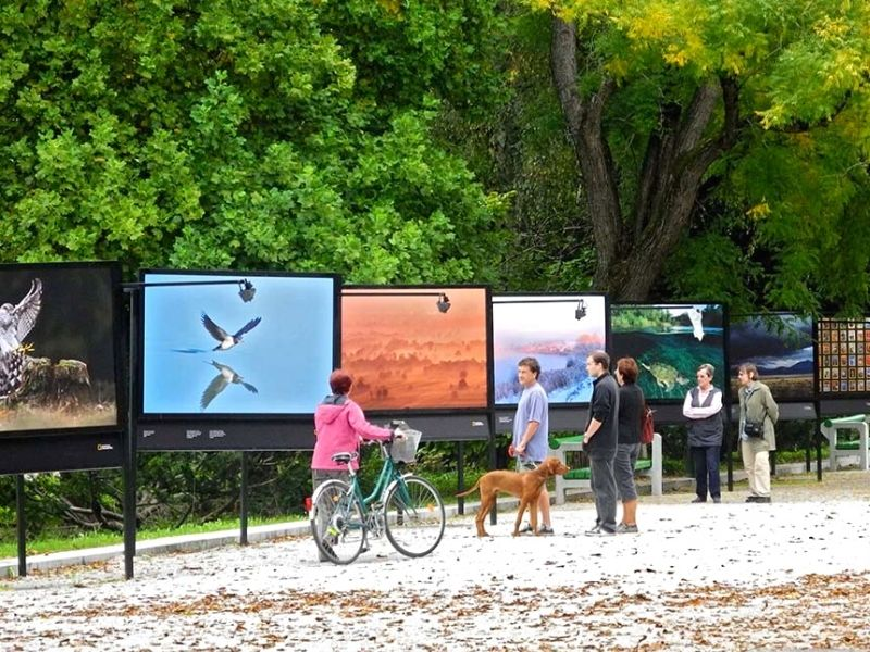 Tivoli Park, the city's largest green space   Top local vibes to feel in Ljubljana